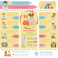Veterinär Infographics