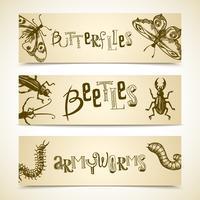 Insekten-Banner gesetzt vektor