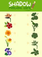 Passende Spielvorlage für Blumenschatten