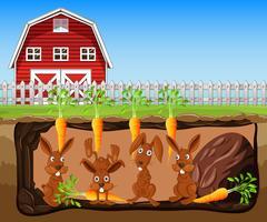 Ein Kaninchenbau unter Karottenfarm vektor
