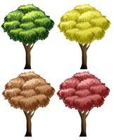 Set med olika träd