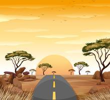 Sonnenuntergang am Himmel und leere Straße ins Nirgendwo