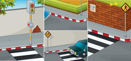 Vägen scener med zebra korsning vektor