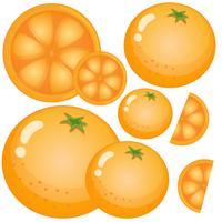 Färska apelsiner på vit bakgrund