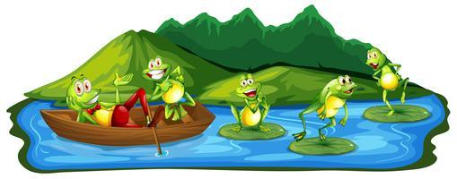 Lyckliga grodor vid dammen