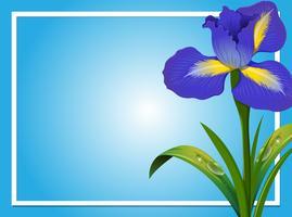 Gränsmall med blå iris vektor