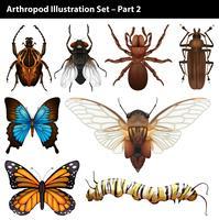 Arthropoden vektor