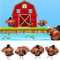 Thanksgiving kalkon på jordbruksmark vektor