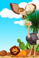 Tre typer av djur i öknen fältet vektor