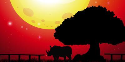 Silhuett noshörning i parken