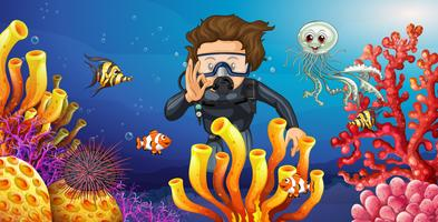 Dykare dyker under vatten med många havsdjur