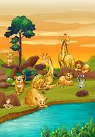 Flussszene mit vielen wilden Tieren vektor