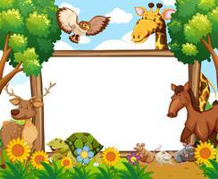 Whiteboard med djur i skogen vektor