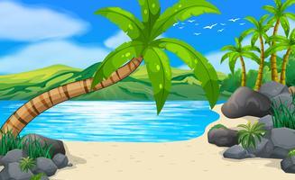 Strandplats med kokospalmer på land