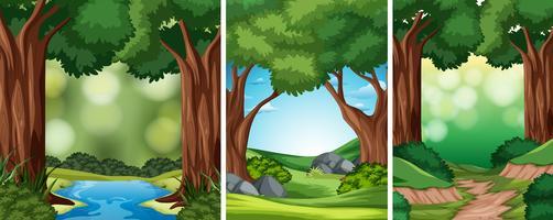 Sats av naturbakgrund