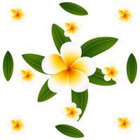 Nahtloses Hintergrunddesign mit Plumeria und Blättern
