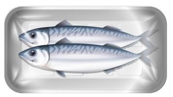Makrele im Paket vektor