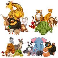 Vier Gruppe wilder Tiere