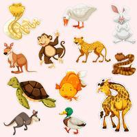 Klistermärke design för vilda djur vektor