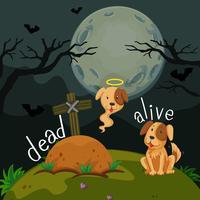 Motsatta ord för döda och levande
