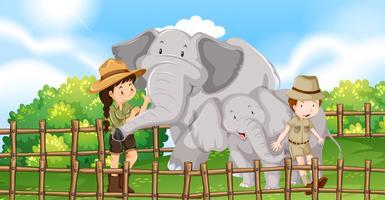 Två elefanter och barn i djurparken