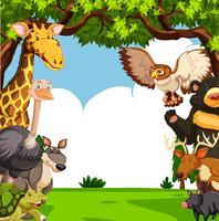 Scen med många djur i skogen
