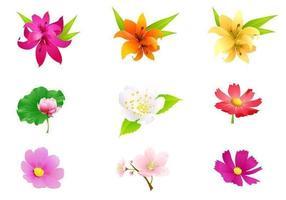 Tropisk blomma vektorpaket vektor
