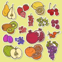 Frukt och bär skissar klistermärken färgade vektor