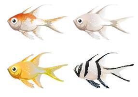 Meeresbewohner vektor