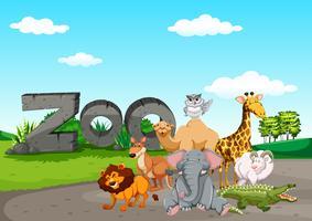 Vild animasl i djurparken