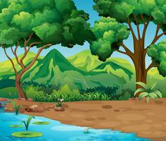 Scen med träd och flod i skogen