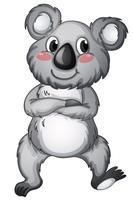 Koala vektor