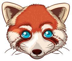 roter Fuchs vektor