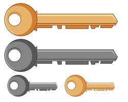 Silberne und goldene Schlüssel vektor