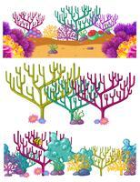 Tre scener med korallrev under vattnet vektor