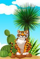 Tiger sitter i kaktus trädgård vektor