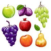 Frukt ikoner Set vektor