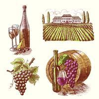 Vin skiss dekorativa uppsättning