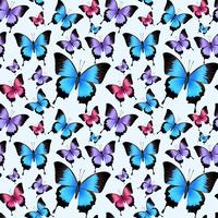 Schmetterlinge nahtlose Muster