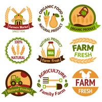 Landwirtschaftliche Ernte und landwirtschaftliche Abzeichen vektor
