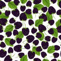 Blackberry nahtlose Muster vektor