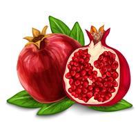 Granatapfel isoliert Poster oder Emblem