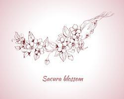 Sakura blomning skiss vektor