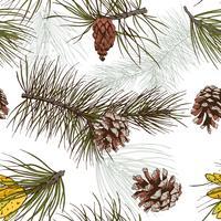 Pine grenar färgat sömlöst mönster vektor