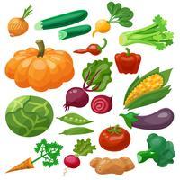 Grönsaker Ikoner Set
