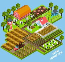 Farm komplexe isometrische Blöcke Zusammensetzung