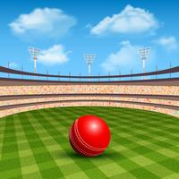 Stadion des Cricket