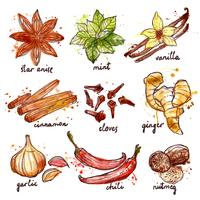 Kryddor och kryddor Ikoner Set