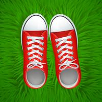 Rote Gumshoes-Draufsicht vektor