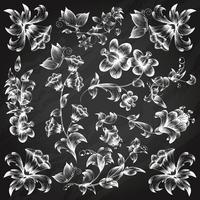 Svartvitt blommigt utsmyckade element mall vektor